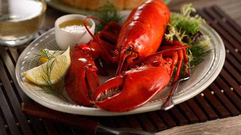 prepared-and-plated-lobster-cooked