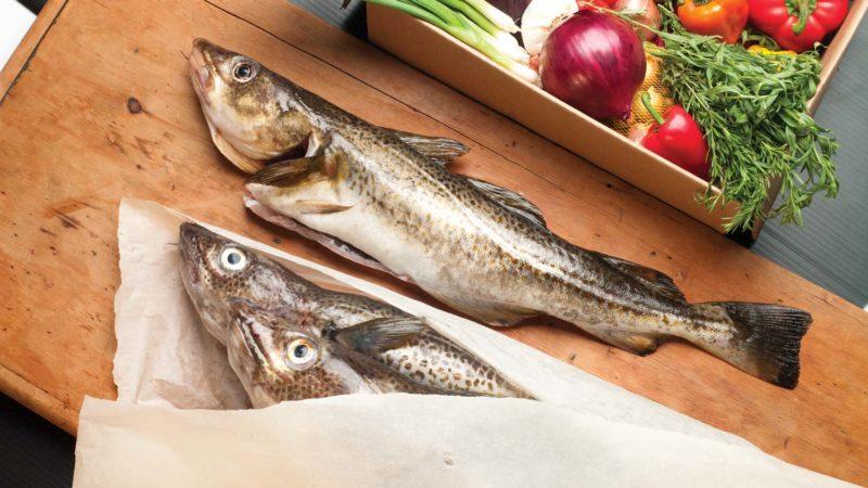 whole-cod-fresh